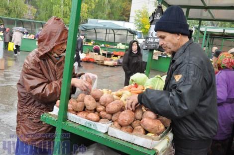 прилавок овощи картофель картошка цена рынок ярмарка