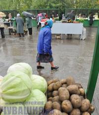 рынок сельхозпродукция овощи ярмарка