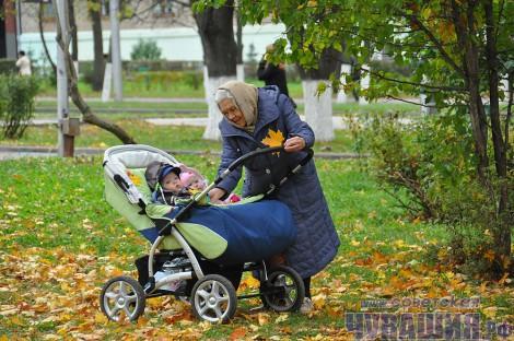 бабуля бабушка внуки внук внучка коляска