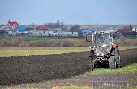 трактор минитрактор мини-трактор пашет обрабатывает поле