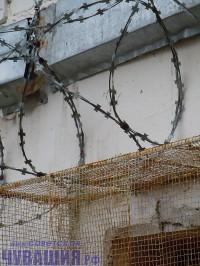 путанка колючая проволока тюрьма забор ограждение