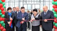В ЗАО «Агрофирма «Ольдеевская» Чебоксарского района завершена реализация инновационного проекта реконструкции теплиц.