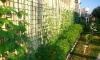 красивая ограда забор