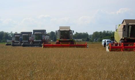 комбайны уборка зерновых