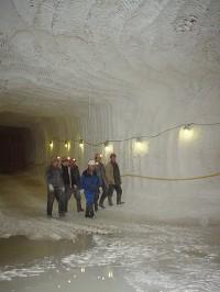 гипсовая шахта