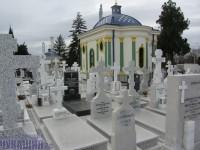 кладбище22