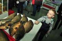 рыба22