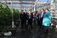 В Симферополе делегация Чувашии побывала и на предприятии «Крымтеплица».Фото cap.ru