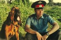 Раньше образцом участкового был Анискин, теперь – Кравцов из сериала «Участок».