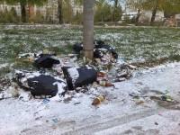 Не надо надеяться, что мусор скоро спрячет снег.