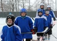Тяжелый бой ведет хоккейная дружина...Фото cap.ru