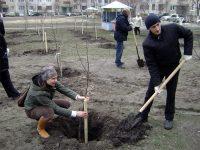 Чтобы саженцы прижились, нужно соблюдать правила их посадки.Фото cap.ru