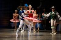 В партии принцессы Авроры выступила Анастасия Абрамова.Фото Максима ВАСИЛЬЕВА