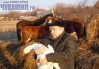 Фермер Алексей Краснов хотел заняться коневодством, а выбрал гусей... Фото Вячеслава ИВАНОВА из архива редакции