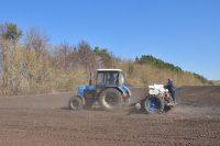 На 4 мая в республике засеяно 52,8 тыс. гектаров яровых зерновых и зернобобовых культур. Фото Олега МАЛЬЦЕВА