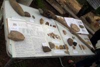 Самый крупный камень, пешня, предназначен для рыбалки, а ложкорез помогал делать деревянную посуду. Кремневые пластинки выполняли роль наконечников стрел.