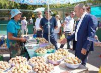 Министру сельского хозяйства интересны и цены на местную картошку, и ее качество. Фото cap.ru