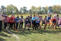 В осеннем легкоатлетическом кроссе приняли участие более четырехсот спортсменов.Фото cap.ru