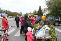 На ярмарке в Цивильске можно купить не только овощи и фрукты,  но и саженцы яблони, сливы, груши, смородины. Фото cap.ru