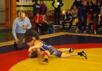 На чемпионате по вольной борьбе призы разыгрывались в восьми весовых категориях.Фото cap.ru
