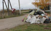 Дорога через д. Дятлино (Солдыбаевское сельское поселение Козловского района).