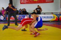 На ковре в современном спортивном центре в Караклах встретились полторы сотни юных борцов.Фото cap.ru