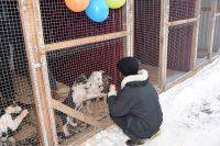 Позитивный настрой сытых, обогретых постояльцев передался гостям.Фото cap.ru
