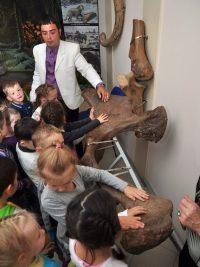 История каждого города, уверены в музее, начинается с момента зарождения жизни на земле. Юным посетителям интересно ко всему древнему прикоснуться руками.