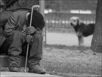 По оценкам социологов, контингент российских бездомных помолодел. Если пять лет назад на улице оказывались, в основном, пятидесятилетние, то сейчас среди них есть и те, кому около сорока.Фото shunk.ru