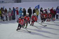 Зрителям на «Олимпийском» запомнилось выступление юных хоккеистов новочебоксарского «Сокола».Фото cap.ru