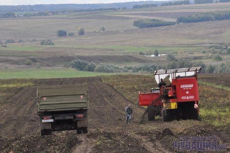 Базу хранения урожая с картофельных полей благодаря господдержке намечается довести до 80 процентов от валовых сборов.Фото Олега МАЛЬЦЕВА из архива редакции