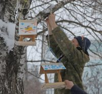 Больше всего домиков для пернатых друзей – в детском парке «Сказка». На время зимы это место стало центром помощи птицам.Фото cap.ru