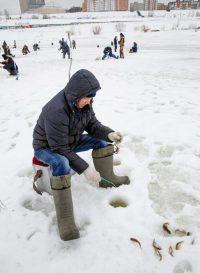 Бывалые рыбаки говорят, что зимой больше рыбы там, где много водорослей. А вот крупная рыба уходит на глубину более двух метров. Фото Максима ВАСИЛЬЕВА