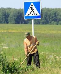 знак пешеходный переход зебра
