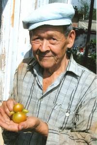 интересный смешной помидор ванька-встанька