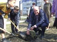 Депутат Госсовета Юрий Кислов на посадке деревьев в Алатыре