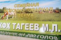 КФХ Тагеев М.Л.