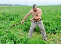 Министр сельского хозяйства Республики Алтай Сергей Огнев на всероссийских сельских играх в Чувашии