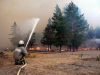 Лесные пожары 2010 года